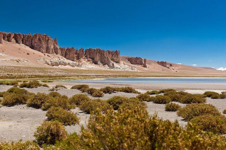 Salar de Tara - fonte: Go Chile