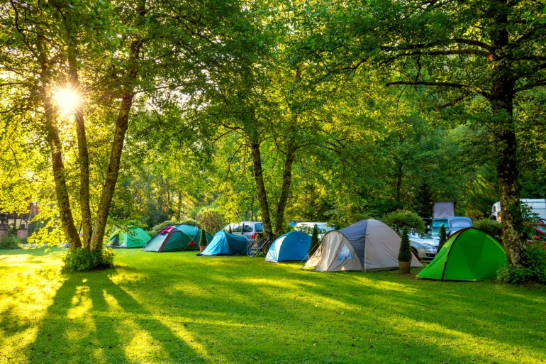 Tents Camping area, early morning, beautiful natural place